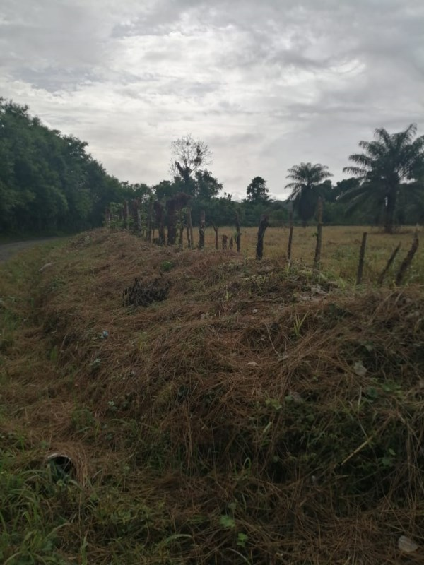 Remax real estate, Panama, Bugaba - Santa Marta, Santa Marta Lot