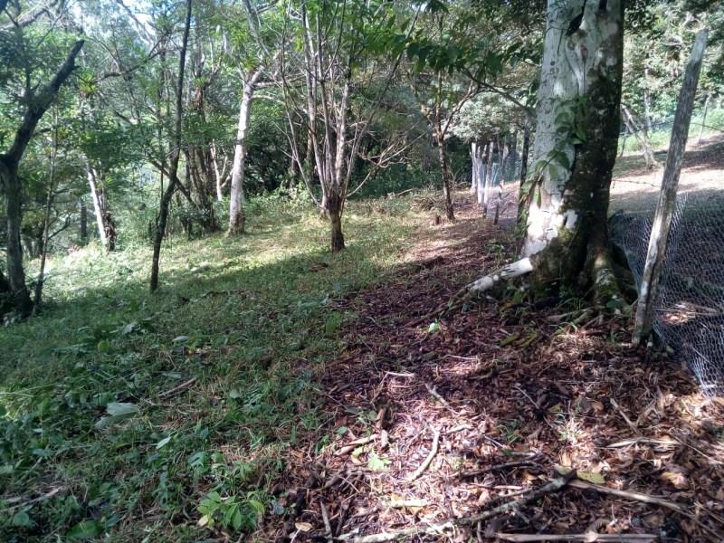 Remax real estate, Panama, Panamá - Altos de Maria, For sale lot of land in Altos del María, in Santiago Apostol, lot No 619