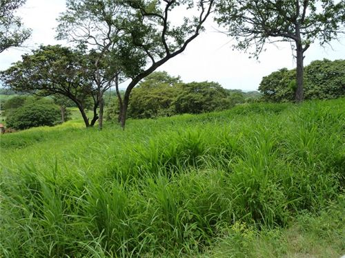 Remax real estate, Costa Rica, Libertad, 1.25 Acres on a Tropical Golf Course