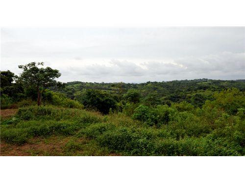 Remax real estate, Costa Rica, Playa del Coco, Finaca Vainilla #17