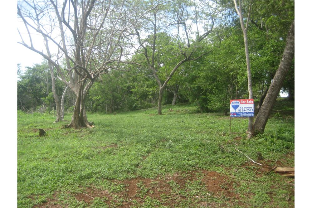 Remax real estate, Costa Rica, Playa Hermosa, Great deal on nature view lots!