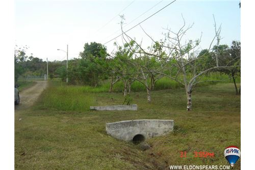 Remax real estate, Panama, San Carlos - Las Uvas, Ready to Build Land in Las Uvas - Price Reduced!