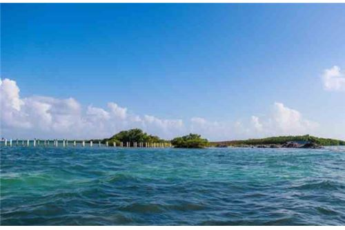 Remax real estate, Belize, Belize, # 2186 - 75 ACRES OF PRIME LAND + SEA FRONTAGE - DROWNED CAYE, BELIZE