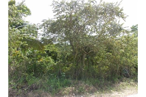 Remax real estate, Belize, Belmopan, # 2376 - 2 ACRES OF LAND - BELMOPAN CITY, CAYO DISTRICT