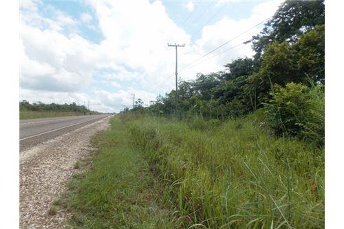 RE/MAX real estate, Belize, Belmopan, # 2377 - 9 ACRES OF LAND + HIGHWAY FRONTAGE