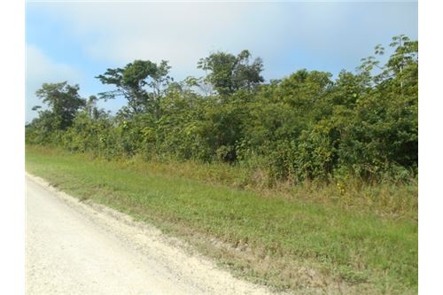 Remax real estate, Belize, Spanish Lookout, # 2397 - 100 ACRES OF LAND - near BELMOPAN CITY, CAYO