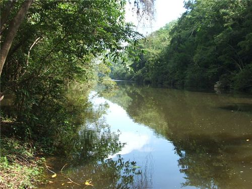 RE/MAX real estate, Belize, Negroman, # 2253 - 22 ACRES OF LAND + RIVER - near SAN IGNACIO TOWN, CAYO