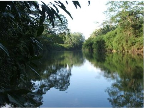 RE/MAX real estate, Belize, Banana Bank, # 2003 - 19 ACRES OF LAND + RIVERFRONTAGE - CAYO, BELIZE