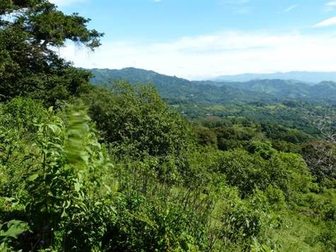 Remax real estate, Costa Rica, Atenas, This is absolutely the best price on raw land so close to town in Atenas