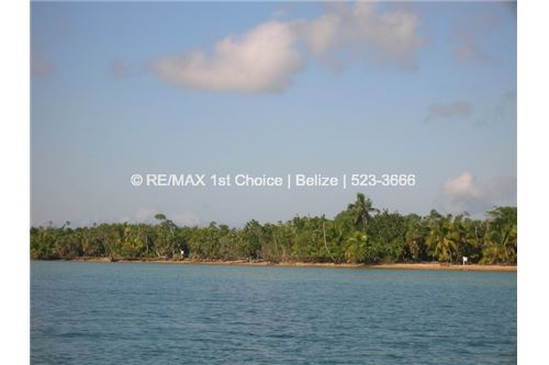 "Remax real estate, Belize, Punta Gorda, ""6615- Just reduced  5 Beachfront Lots in Punta Negra, Toledo, Belize"""