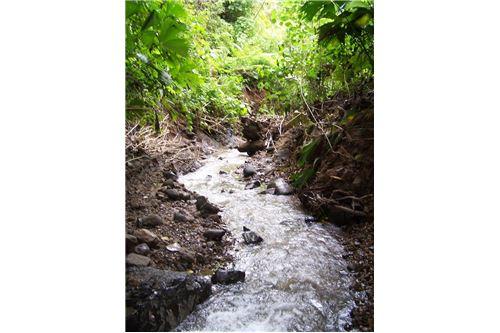 Remax real estate, Costa Rica, Agua Buena, Waterfall Farm